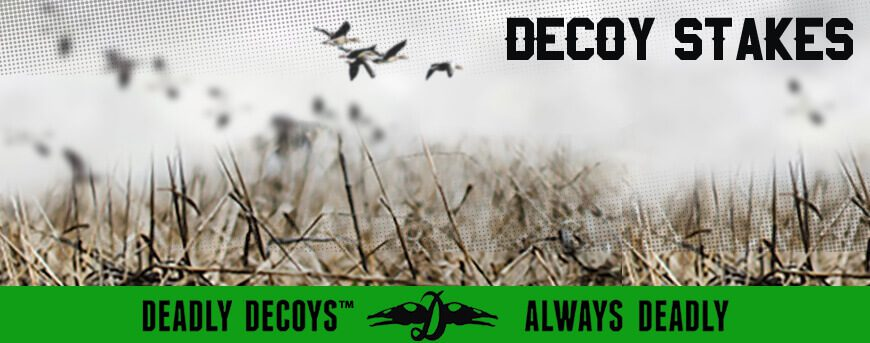 Category Image for Decoy Stakes
