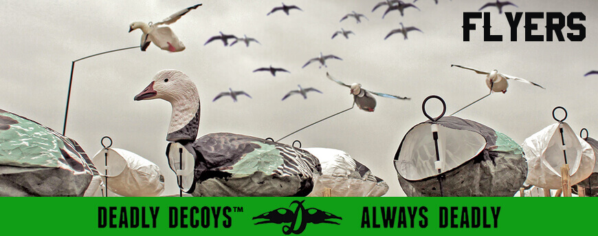 Deadly Decoy's Flyers